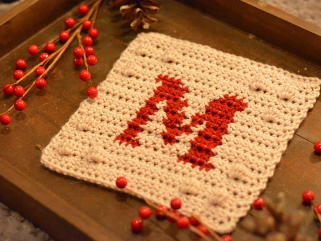 Close-up of a wooden tray filled with pinecones and red berries surrounding the monogram M blanket square